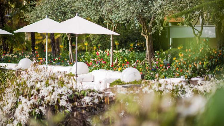 An oasis of nature - Park Hotel Mignon